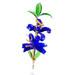 Sklenené kvetiny